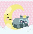 bashower cute raccoon sleeping half moon vector image vector image
