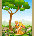 cartoon lion sitting in the jungle vector image