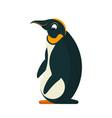 cartoon penguin in flat style vector image