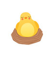 cute baby chicken sleeping in the nest funny vector image vector image