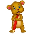 Cute brown bear cartoon holding red pencil vector image