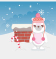 cute polar bear merry christmas vector image