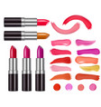 lipstick packaging design and lipstick vector image vector image