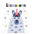 llamacorn cute card funny print with llama vector image vector image