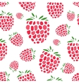 Raspberry seamless pattern for your design vector image vector image
