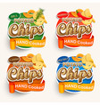 set of different chips vector image vector image
