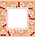 shiba inu dog with red ribbon on orange banner vector image vector image