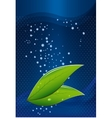 tea leaves on a blue background with water drops vector image vector image