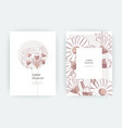 card with flowers calendula chrysanthemum vector image