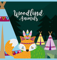 fox wooland animals cartoon vector image vector image