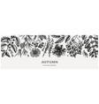 hand-sketched autumn banner elegant botanical vector image vector image