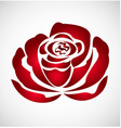 red rose flower logo vector image vector image