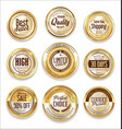 sale retro vintage golden badges and labels 07 vector image vector image
