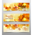 abstract leaves banner vector image