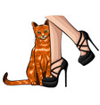 caring for homeless pets concept a street cat vector image