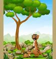 cartoon mother meerkat with her little baby in the vector image vector image