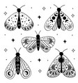 set isolated black magic moths and butterflies vector image vector image