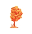 Tree With Orange Leaves As Autumn Attribute vector image vector image