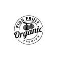 fig fruit logo design symbol template vector image