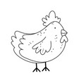 hen poultry farm animal isolated icon on white vector image