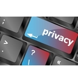 Keyboard with privacy text on keyboard - security vector image vector image
