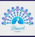 peacock symbol vector image