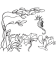 seaweed and sea horse vector image vector image
