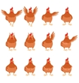 set brown hen flat icons vector image vector image