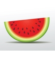 watermelon slice Isolated vector image vector image