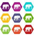 wild elephant icon set color hexahedron vector image