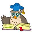cartoon owl teacher with book vector image vector image