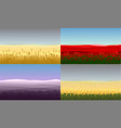 colorful beautiful field landscapes set vector image