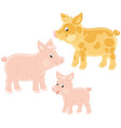 small pink piglet pig and hog vector image vector image