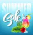 Summer sale lettering on blue background with vector image