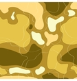 pattern with the image of spots and lines khaki vector image