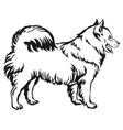 decorative standing portrait of dog samoyed vector image vector image