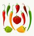 different peppers set vector image vector image