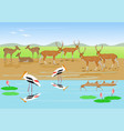 herds of deer are resting along the stream vector image