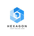hexagon logo concept creative minimal design vector image