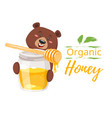 honey jar and character bear vector image vector image