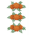 marigold flower design elements vector image
