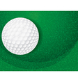 Golf Ball on Green Textured Background vector image vector image