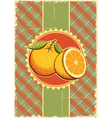 Orange fresh fruits vector image vector image