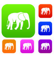 wild elephant set collection vector image vector image