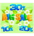 Big sale inscription spring vector image