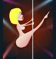 pole girl dancer strip vector image