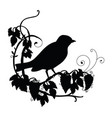 black silhouette birdie and flower composition vector image vector image