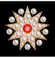 Brooch star vector image vector image