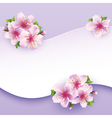 Floral background greeting card with flower sakura vector image vector image