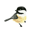 funny realistic tits and bird feeder on white vector image vector image